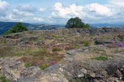 GreenDoor Asturias - https://www.facebook.com/Greendoorasturias